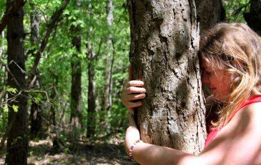 Sylvothérapie dans la Forêt de Marsanne ©SScorbiac