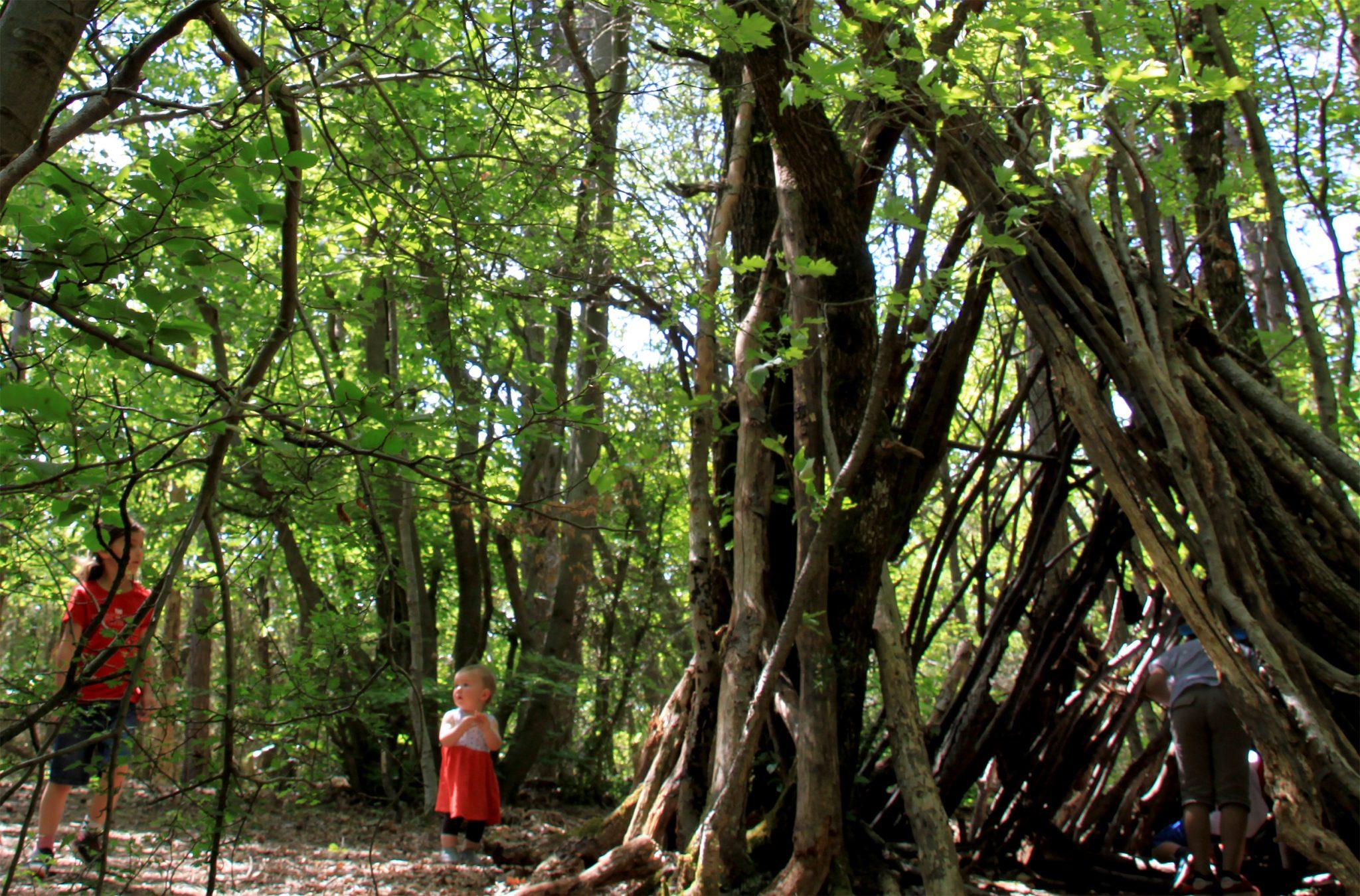 Cabane sur le sentier pédagogique - Forêt de Marsanne ©SScorbiac