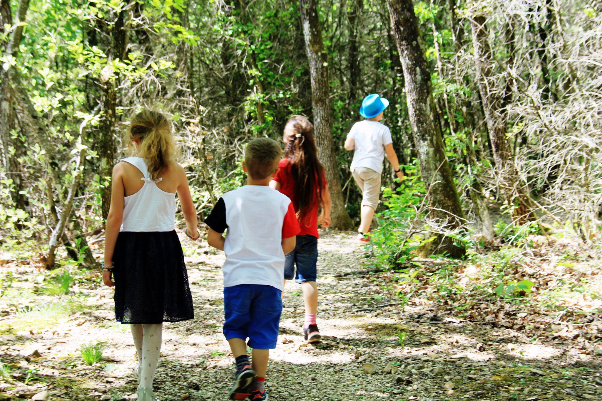 Enfants sur le sentier pédagogique - Forêt de Marsanne ©SScorbiac