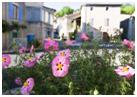 Village Botanique de Manas à Manas - 3