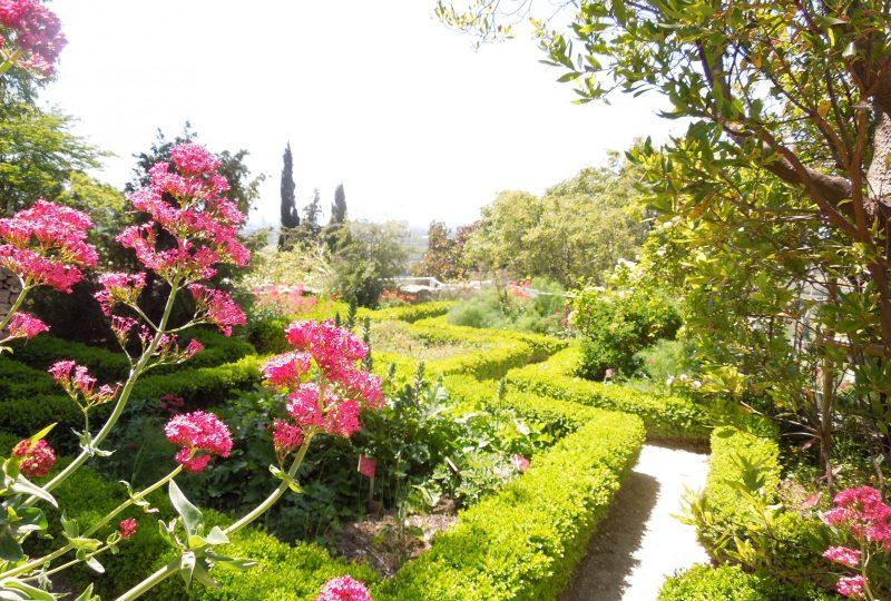 Jardin des Herbes – Jardin communal classé «Remarquable» à La Garde-Adhémar - 2