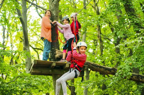 Parcours d'aventure La Forêt de Robin à Marsanne - 0