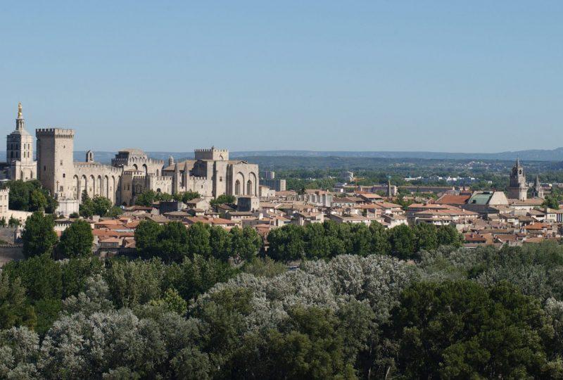 Palais des Papes à Avignon - 1