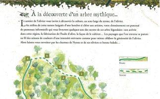 sentier de l'olivier