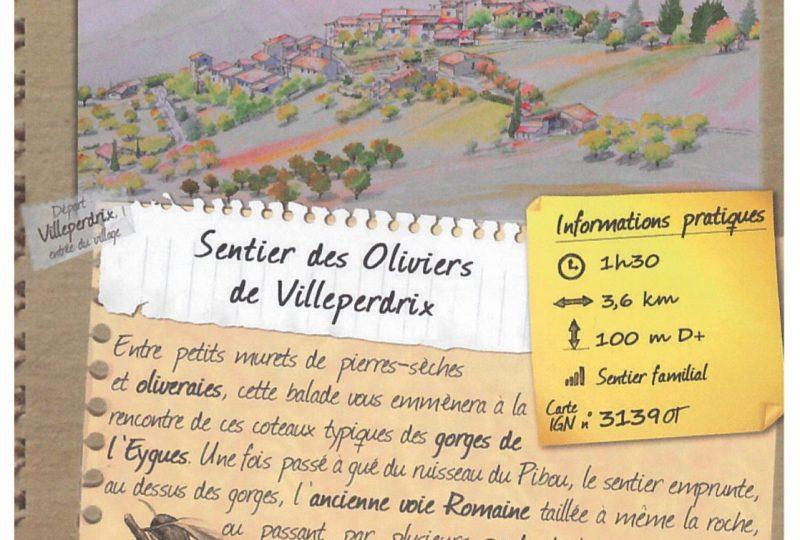 Sentier des Oliviers de Villeperdrix à Villeperdrix - 0