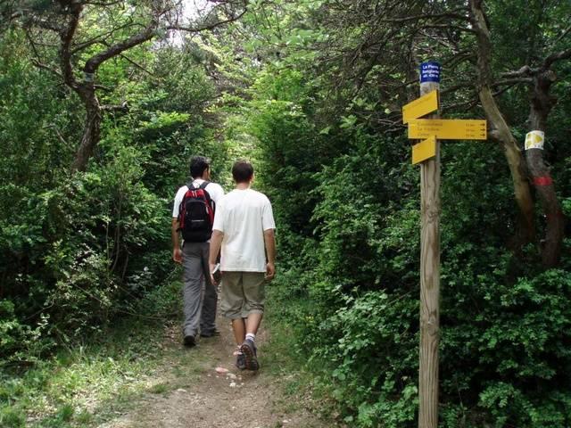 Forêt de Marsanne à Marsanne - 0