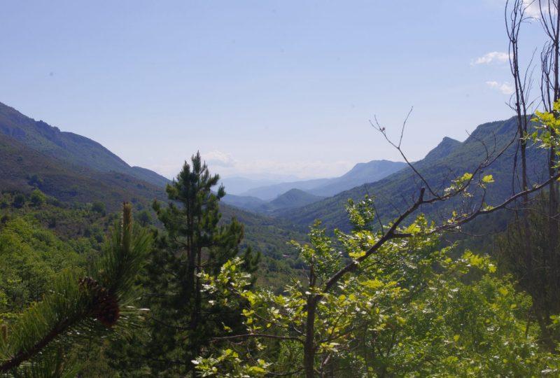 Randonnée Trail – Tour de Piedblacun à Les Omergues - 5