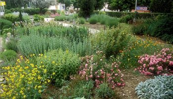 Le Jardin des Arômes à Nyons