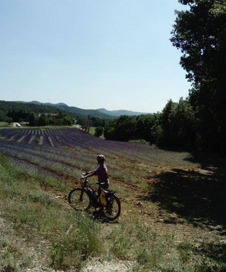 «De cave en cave» en vélo à assistance électrique à Dieulefit - 4