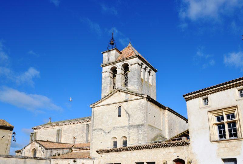 Cathédrale Notre Dame à Saint-Paul-Trois-Châteaux - 0