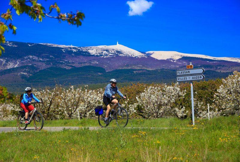 A vélo, en liberté, au pied du Mont Ventoux à Mollans-sur-Ouvèze - 0