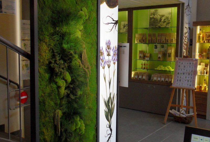 Office de Tourisme des Baronnies en Drôme Provençale – Pays de Buis-les-Baronnies à Buis-les-Baronnies - 4