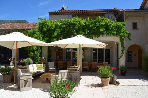 Sous l'olivier, la vigne à Condorcet - 5