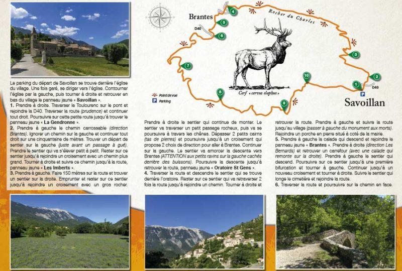La randonnée de Savoillans par Terra Rando à Savoillans - 1