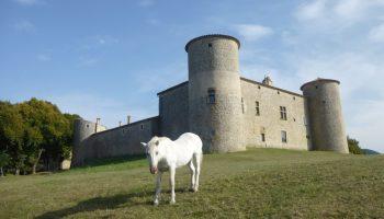 Château de Comps