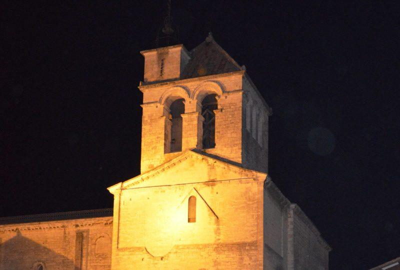 Cathédrale Notre Dame à Saint-Paul-Trois-Châteaux - 1