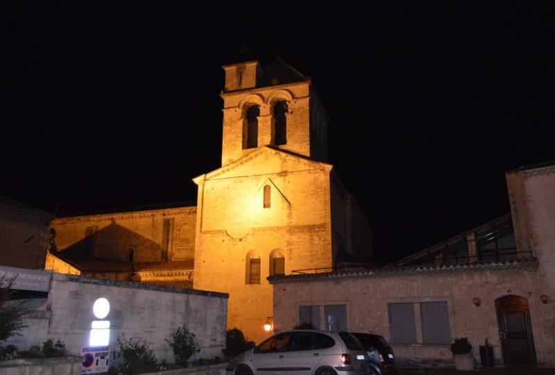 Cathédrale Notre Dame à Saint-Paul-Trois-Châteaux - 2