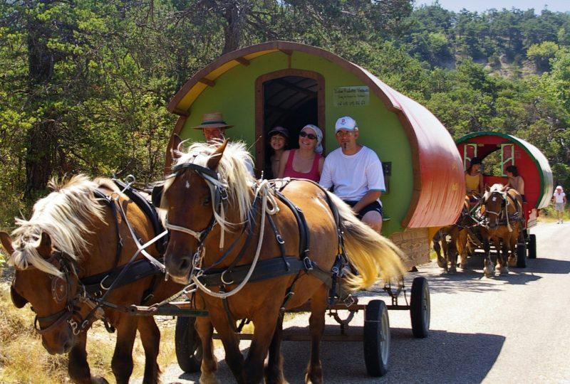 «Grain de Bohème» 2 jours et 1 nuit en roulotte itinérante à Le Poët-Célard - 1