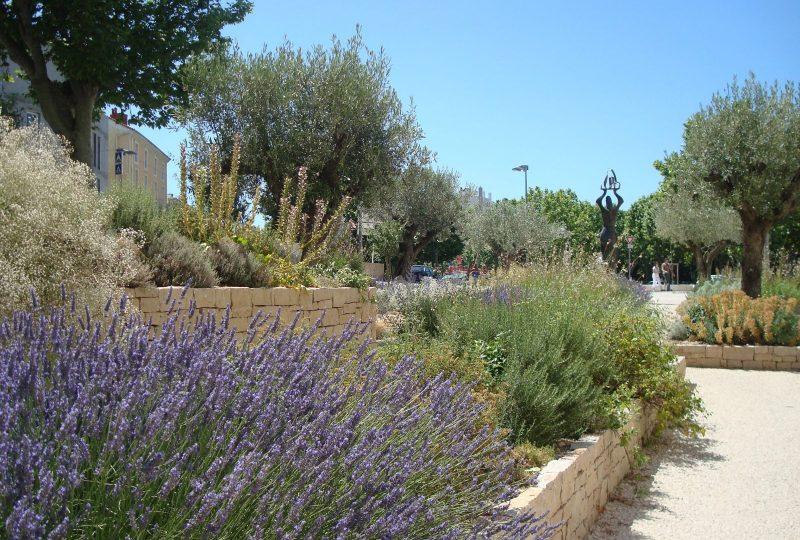 Le Jardin des senteurs à Montélimar - 1