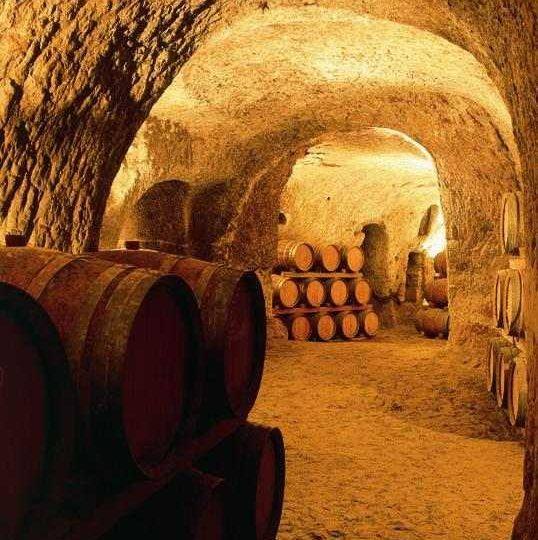 Cave de Visan à Visan - 1
