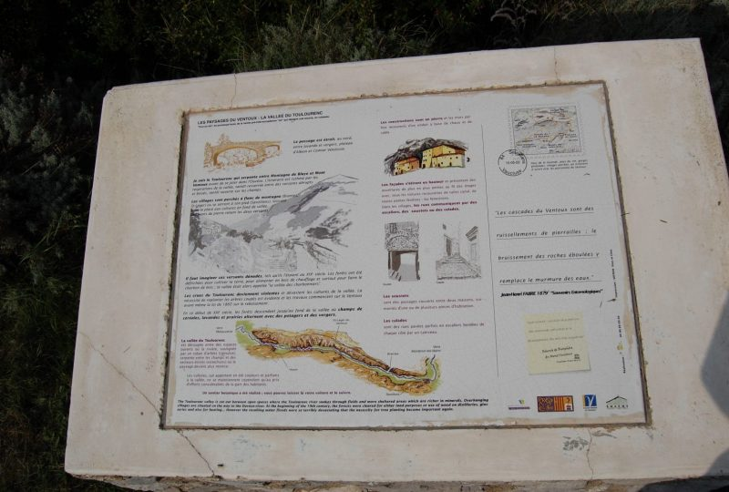 Rêverie du Promeneur Botaniste – Sentier botanique à Savoillans à Savoillans - 1