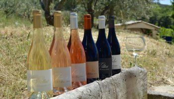 Domaine Piallat – Vin – Montbrison sur Lez