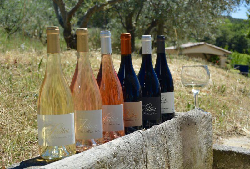 Domaine Piallat – Vin à Montbrison-sur-Lez - 0