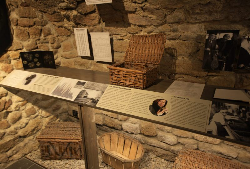 Musée de la truffe et du vin à Richerenches - 4