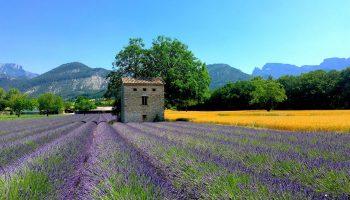 Entre Alpes et Provence