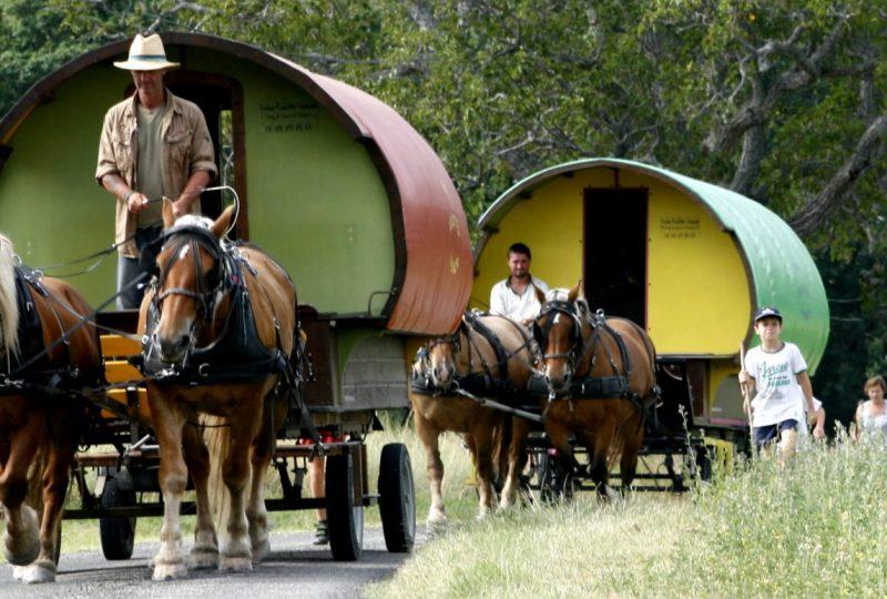 Une semaine de bohème en roulotte tirée par des chevaux à Le Poët-Célard - 1