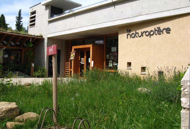 Le Naturoptère à Sérignan-du-Comtat - 0