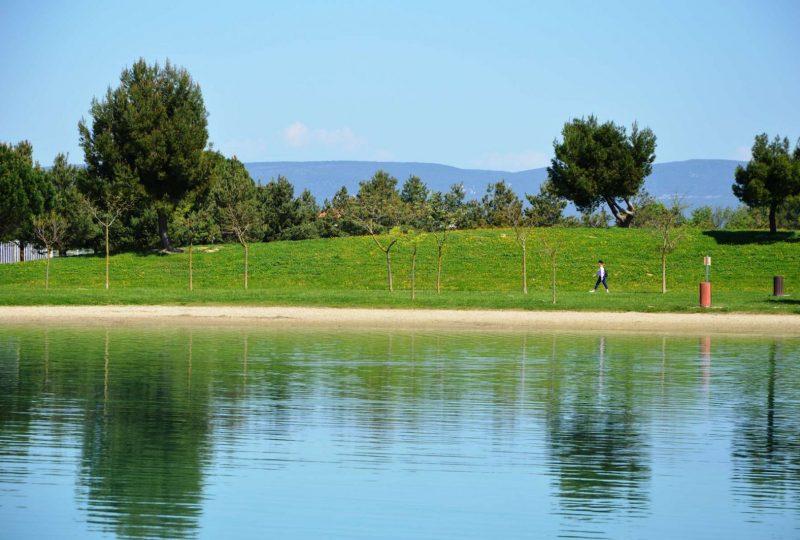 Lac de Pignedoré à Pierrelatte - 4