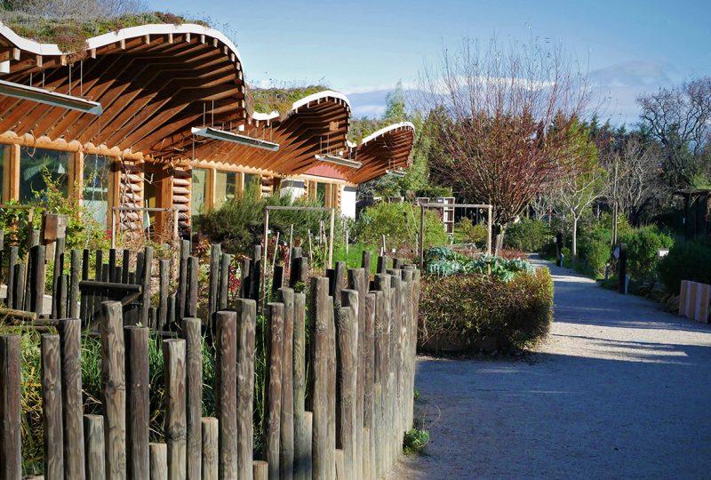 Le Naturoptère à Sérignan-du-Comtat - 1