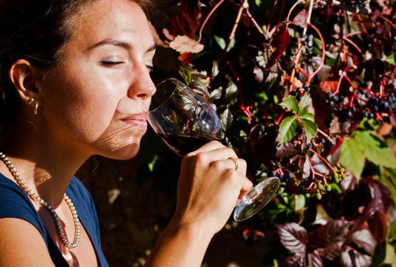 Voyage au cœur des vignobles à Venterol - 5