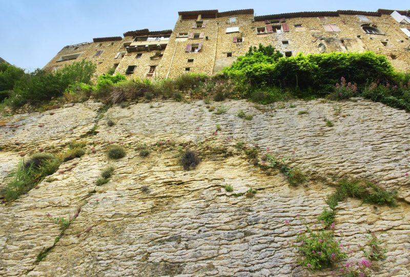 Escale «Plantes & Bien-Être» : Buis-les-Baronnies / Montbrun-les-Bains à Propiac - 2