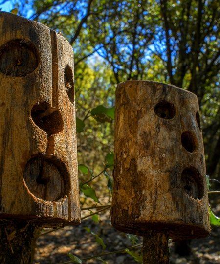 Echappée nature – Drôme Sud Provence à Tulette - 6